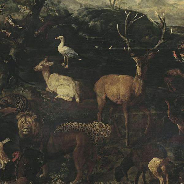"""Ingresso gratuito alla mostra """"Il meraviglioso Mondo della Natura"""""""