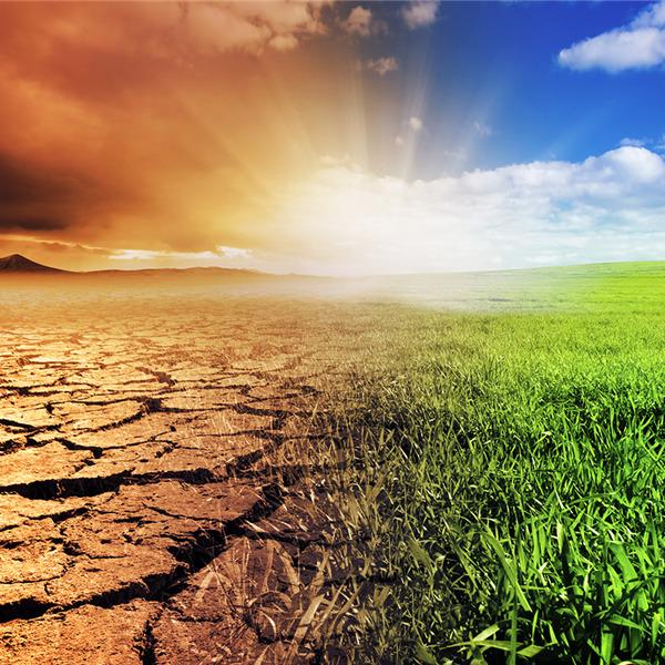 Cambiamenti climatici: la salute del nostro pianeta al Festival Bergamo Scienza