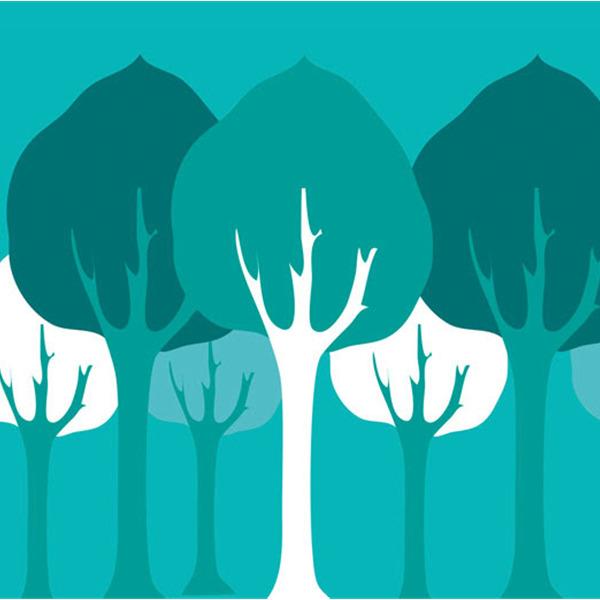 Arte e rispetto della Natura per combattere il Climate Change