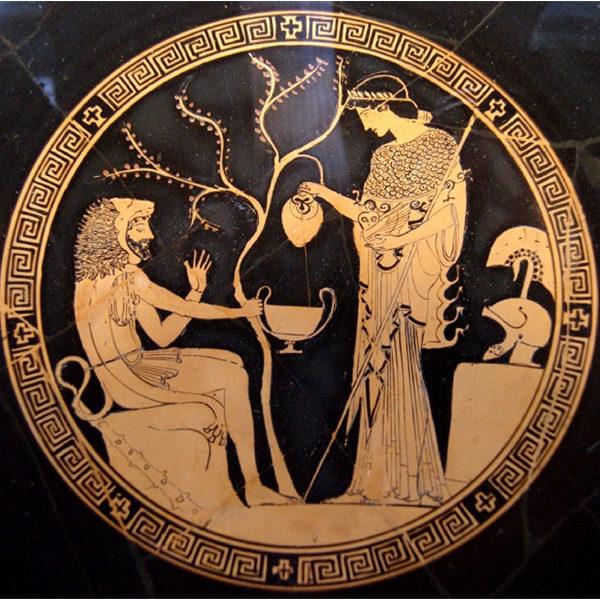 L'oro d'oliva. Percorso alla scoperta della millenaria storia dell'olio e dell'ulivo