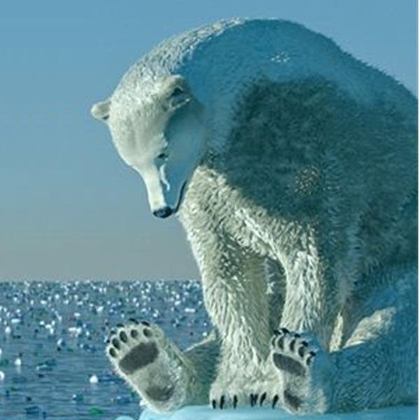 Ferrara Film Corto 2020 - Festival di cortometraggi dedicato al cambiamento climatico