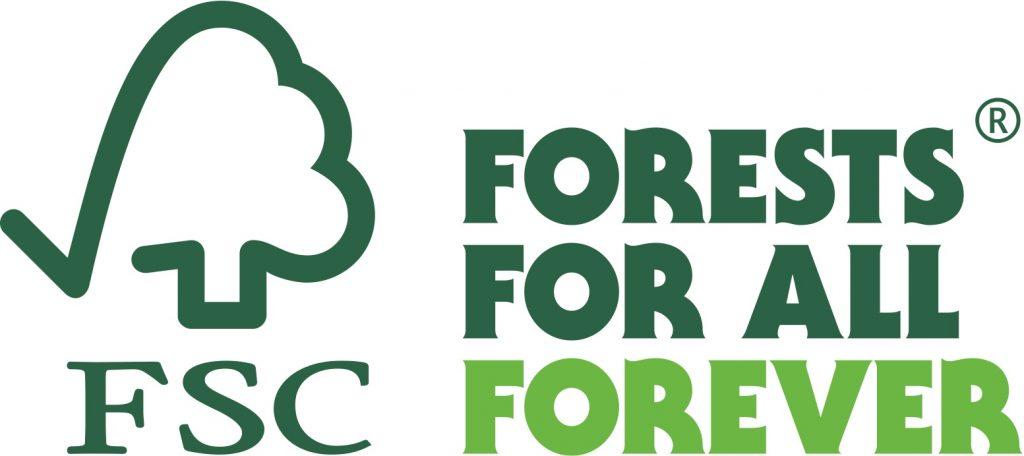 Cambiamenti climatici: ci salveranno le foreste? Il 2020 sarà l'anno degli alberi - Resilienza e
