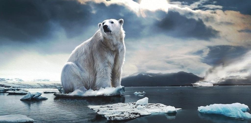 Cambiamenti climatici e ghiacciai. Incontro con Massimo Frezzotti