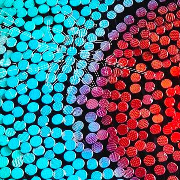 I colori della Scienza: all'Accademia, l'arte racconta la ricerca