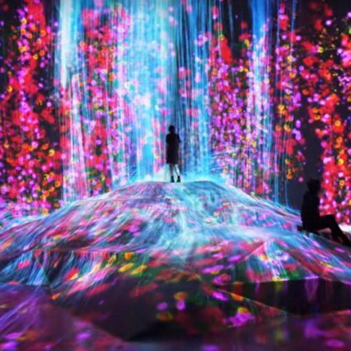 Viaggio virtuale tra le attrazioni e le gemme nascoste di Tokyo