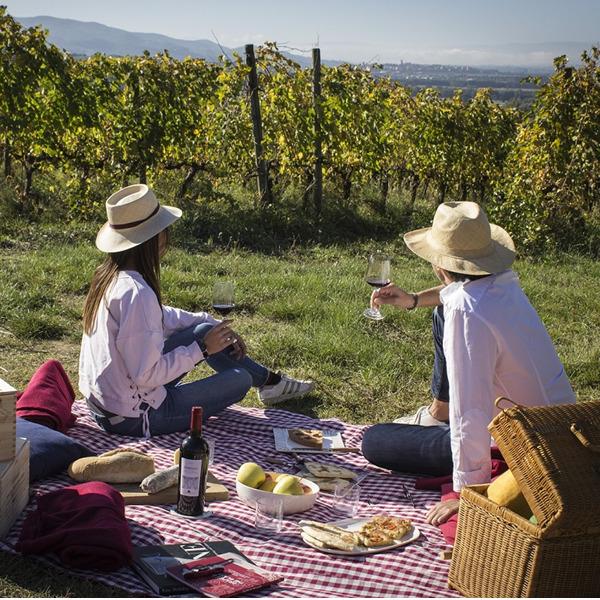 Riapre il Museo del Vino di Torgiano