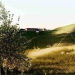La via selvatica: ciclo di incontri curati da Matteo Caccia