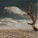 """Incontro: """"Rischi climatici: i possibili danni all'economia e il ruolo della BCE"""""""