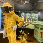 La via delle api. Un percorso attraverso il mondo delle api e i loro prodotti