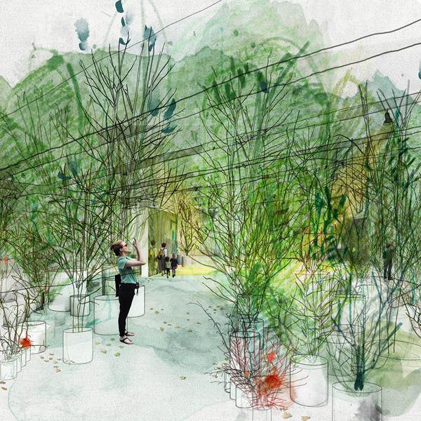 Foresta M9 - Un paesaggio di idee, comunità e futuro