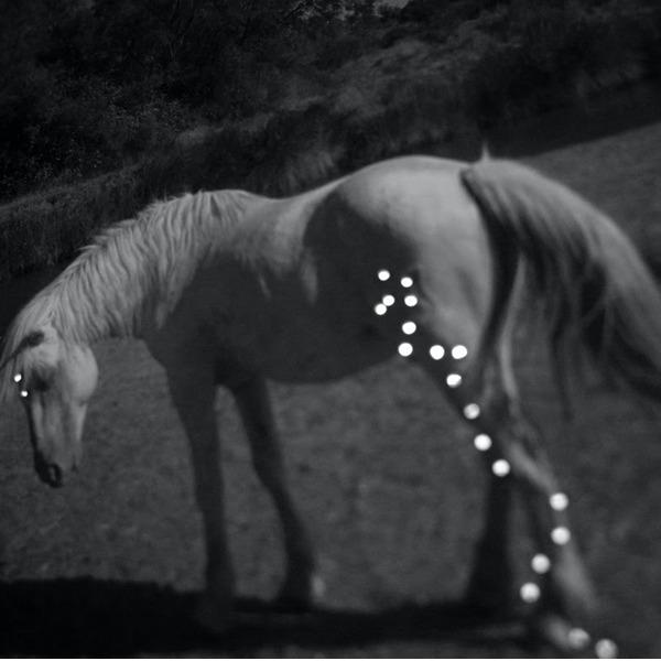 Laboratorio esperienziale: Il viaggio dell'unicorno. Prima tappa - La partenza