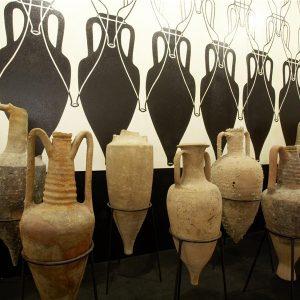 Il Museo del Vino e il Museo dell'Olivo e dell'Olio di Torgiano tornano ad accogliere i visitatori