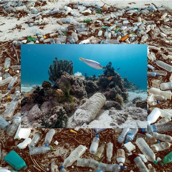 Stop bottiglie di plastica! Firma la petizione di Greenpeace