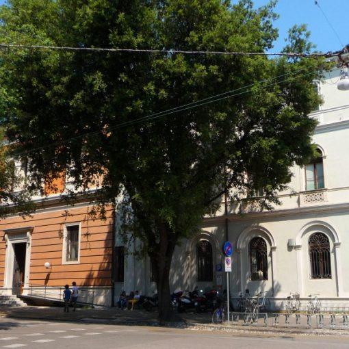 La petizione per intitolare la Biblioteca Civica di Treviso a Giovanni Comisso