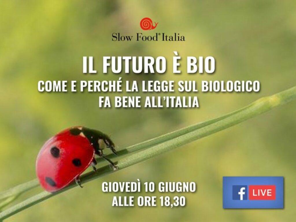 Il futuro è bio. Come e perché la legge sul biologico fa bene all'Italia