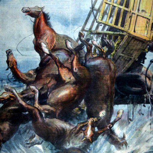 """I Disegni di Achille Beltrame: """"Un autotreno carico di cavalli precipita in un torrente"""""""