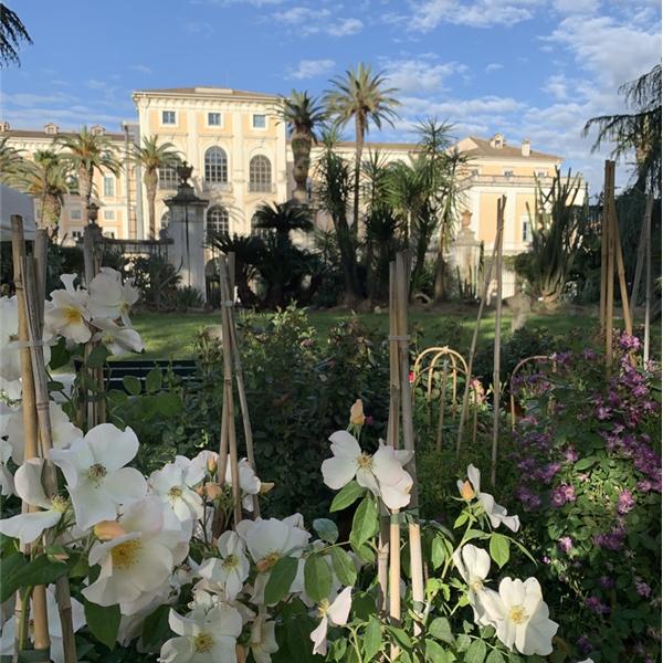 Giardininvaso al Museo Orto Botanico di Roma