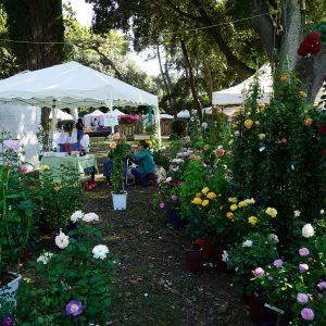 Harborea - Festa delle piante e dei giardini d'oltremare. Decima edizione