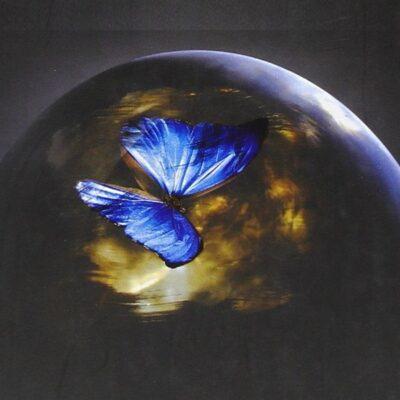 """FuturLibri: """"Memento. I sopravvissuti"""" di Julianna Baggott"""